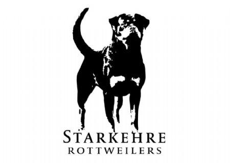 Starkehre Rottweilers